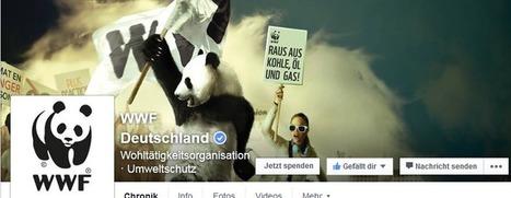 Neuer Button, mehr Spender? Der Facebook Spenden-Button für NGOs - Campaigning Academy Berlin | Advocacy communications | Scoop.it