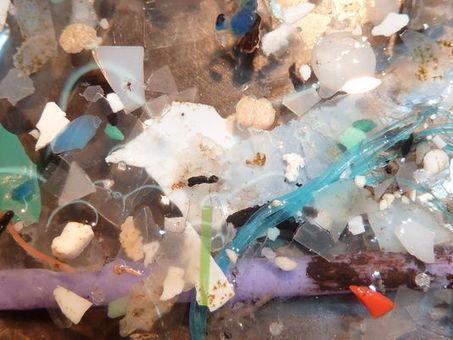 269 000 tonnes de déchets plastique flottent sur les océans | Toxique, soyons vigilant ! | Scoop.it