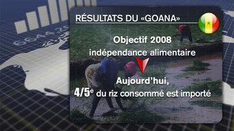 Sénégal: Plaidoyer pour l'audit des terres attribuées dans le cadre de la GOANA et du Plan-REVA | Daraja.net | Scoop.it