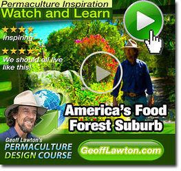 America's Forgotten Food Forest Suburb Rediscovered! | Sustainability | Scoop.it
