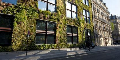 Paredes vivas - eltiempo.com | Jardines Verticales y azoteas verdes. | Scoop.it