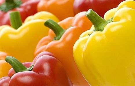 Piadina vegan peperoni e tofu | DaringToDo.com | Mangiare diverso | Scoop.it