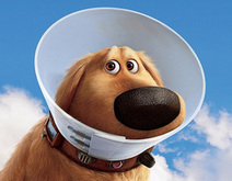 Cone of learning or cone of shame? | A New Society, a new education! | Scoop.it