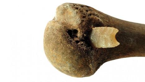 Brutal Bronze Age battle discovery changes understanding of history | Bibliothèque des sciences de l'Antiquité | Scoop.it
