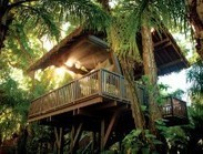 5 luxury hotels in the trees | Luxury Innovation | Scoop.it