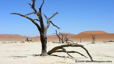 Lanza la ONU nueva advertencia sobre el clima global | #Ecologia | Educacion, ecologia y TIC | Scoop.it