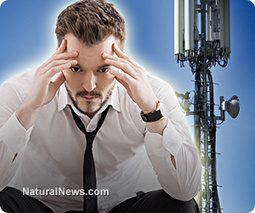 Americans' brains being fried by cell towers: New scientific evidence reveals shocking extent of electropollution damage | Reality Bytes | Scoop.it