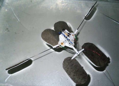 Water Strider Symbol Robot Mimics Water Striders'