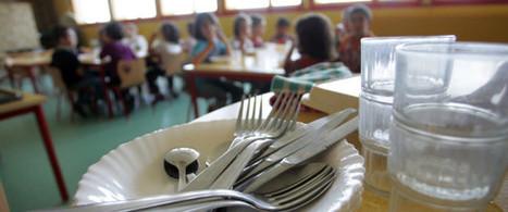 Un député UDI veut rendre obligatoire un menu végétarien dans les cantines | Des 4 coins du monde | Scoop.it