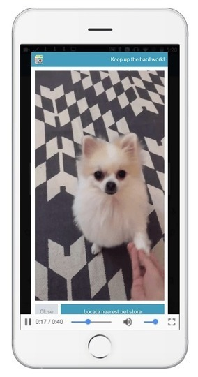 Advertisers And Publishers Are Starting To Get With The Vertical Video Program | AdExchanger | Content production | Scoop.it
