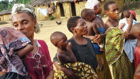 Afrikaanse pygmeeën ontstonden twee keer in evolutie   School   Scoop.it