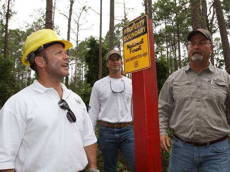 Keeping it all straight: Ocala National Forest survey - Ocala | Land Surveyors | Scoop.it