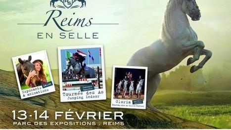 Reims en selle: un nouvel événement équestre d'exception en indoor ! | Salon du Cheval | Scoop.it