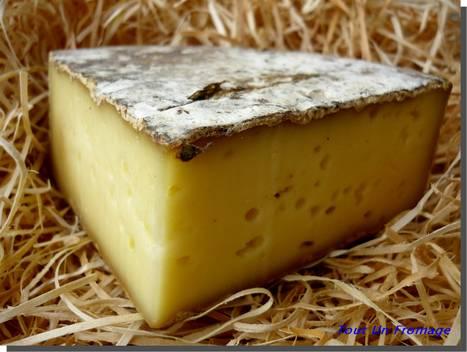 Les fromages des Bauges veulent séduire les consommateurs de Rhône-Alpes | The Voice of Cheese | Scoop.it