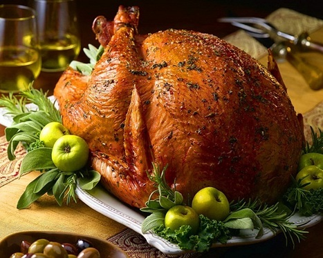 Food Safety Tips for Your Xmas | Food Safety and Quality | Scoop.it