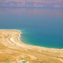 Life in the Dead Sea | Oceanic | Scoop.it