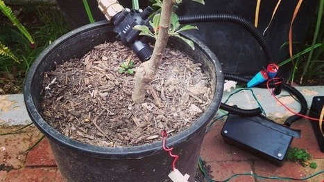 Make a Programmable Irrigation Controller with a Raspberry Pi | Arduino, Netduino, Rasperry Pi! | Scoop.it