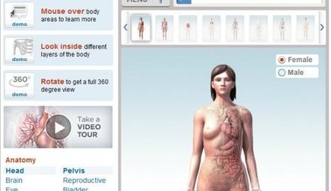 7 recursos online para aprender Anatomía y Fisiología | Tecnología Educativa e Innovación | Scoop.it