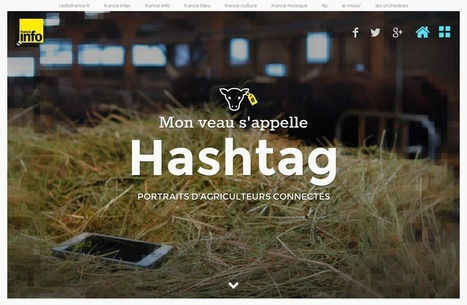 Mon veau s'appelle hashtag - | Hashtag : actualités et fonctionnalités | Scoop.it
