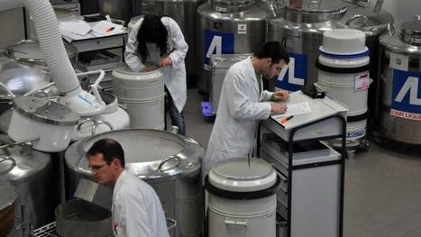 600 chercheurs lancent l'institut  Sciences Animales Paris Saclay   EntomoScience   Scoop.it