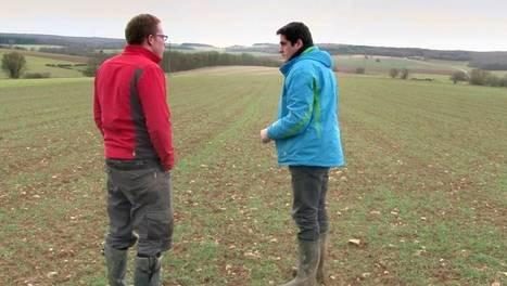 Agriculture biologique, cultiver l'avenir ? | Questions de développement ... | Scoop.it