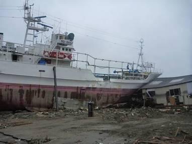 Tsunami de Fukushima : la vague mesurait bien 15 mètres de haut | Japan Tsunami | Scoop.it