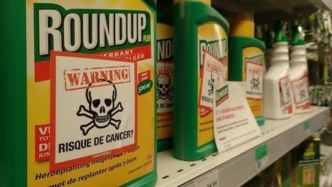 EU glyphosate tantrum could leave people exposed to cancer risk | OrganicNews | Scoop.it