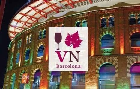 Vadevi: VN-bcn, la fira dels vins ecològics, biodinàmics i naturals a Catalunya | Enoturisme | Scoop.it