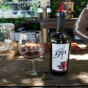 Salud! Mexican Wine Crosses Over at Wine Riot LA 2013 - LA Magazine (blog) | enfermeria | Scoop.it