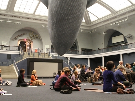 Tibetan Festival Brings Meditation to the Museum of Natural History - DNAinfo | Mystic Mindpower | Scoop.it