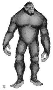 Bigfoot videos goes viral   News   Scoop.it