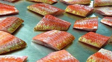 Las mafias en Italia se introducen en restaurantes y supermercados ... - ABC.es | Red Restauranteros - Noticias | Scoop.it