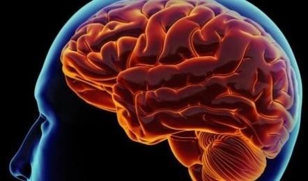 Faktanya Diabetes ternyata dapat merusak otak Manusia | Harga Hape Terbaru | Scoop.it
