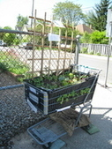 Quirky niche gardens 'repurpose' sink, carts | (Culture)s (Urbaine)s | Scoop.it