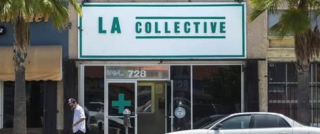 Unlicensed Marijuana Stores Grow Like Weeds in LA | Criminology and Economic Theory | Scoop.it
