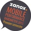 zanox - Le réseau de marketing à la performance leader en Europe – zanox.com | Webmarketing - SEO | Scoop.it