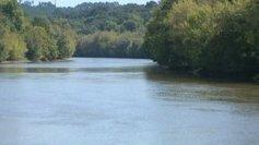 [pollution] Le bassin Adour-Garonne parmi les champions de la contamination des cours d'eau aux pesticides | Toxique, soyons vigilant ! | Scoop.it