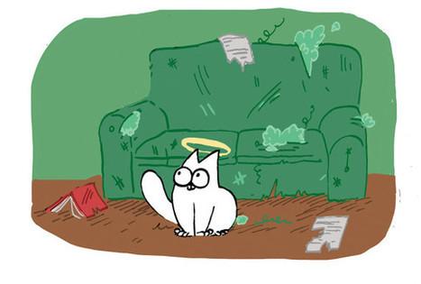 Il compile tous les quarts d'heure de folie de son chat | CaniCatNews-actualité | Scoop.it