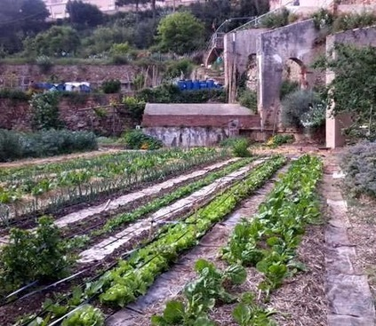 Agricultura urbana: algunas reflexiones sobre su origen e importancia actual | Alternativas - Tecnologías - Reflexion - Opiniones - Economia | Scoop.it