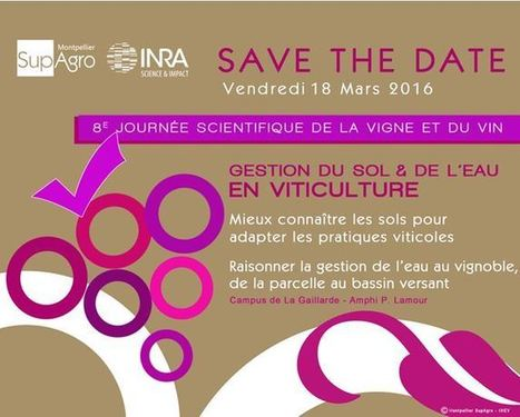 18/03/16 - 8e Journée scientifique de la vigne et du vin - Campus Montpellier SupAgro/Inra | AGRONOMIE VEGETAL | Scoop.it