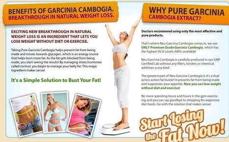 Best fat burning supplement | Get Slim within Days | Scoop.it