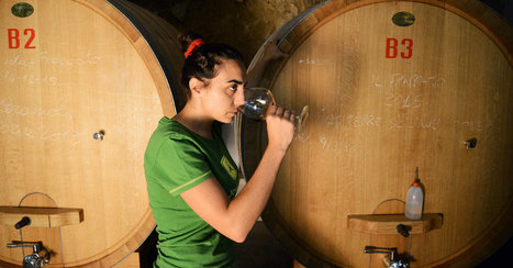 In Sicily, Making a Name for Vittoria | Gastronomy & Wines | Scoop.it
