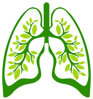 Improve Your Lung Health and Breathe Easier - Ask Dr. Maxwell ... | Healing Chronic Pain & Disease | Scoop.it