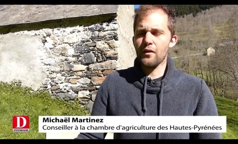 Aulon : des nichoirs à chouette pour lutter contre le campagnol | Vallée d'Aure - Pyrénées | Scoop.it