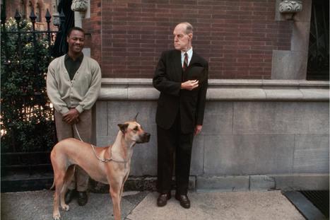 Joel Meyerowitz: Taking His Time as a Master Street Photographer   LightBox   TIME.com   Master Photographers   Scoop.it