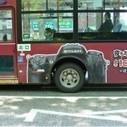 Le futur du marketing sera « street » ou ne sera pas ! - Widoobiz   Marketing   Scoop.it