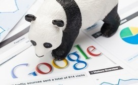 New Google Panda Update Rolling Out Now: What Changes Are Webmasters Seeing? | seo strategy | Scoop.it