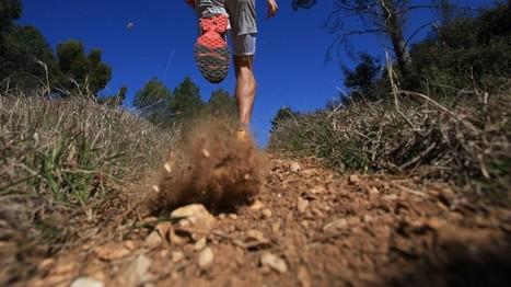 Quelle est la technique pour bien descendre en trail ? | Run & Trail | Scoop.it