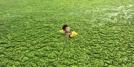 If You Think China's Air Is Bad, You Should See The Water | ZeroCarbonMusic | Scoop.it