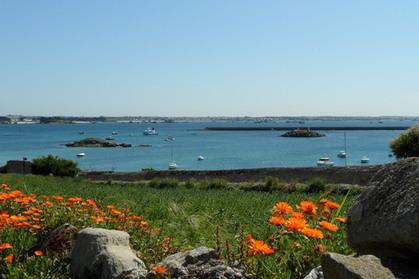 L'île de Batz, jardin des mers | L'environnement en Bretagne | Scoop.it